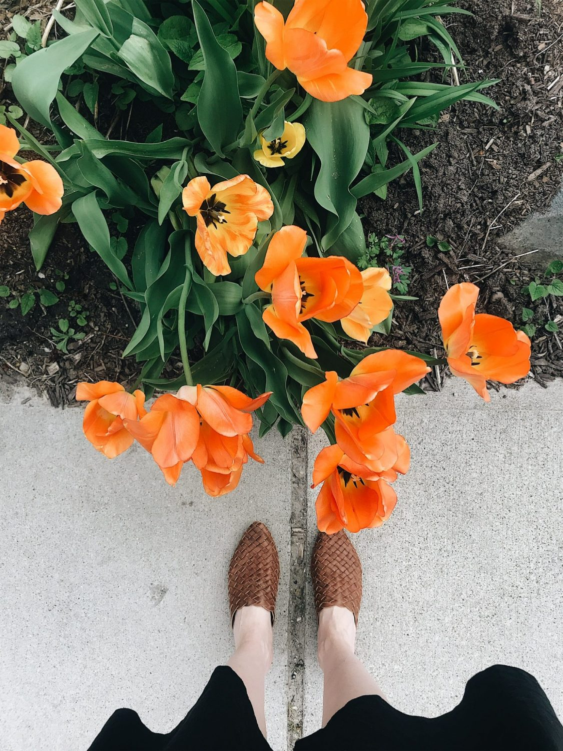 Style Bee - Life Lately - Spring 2019